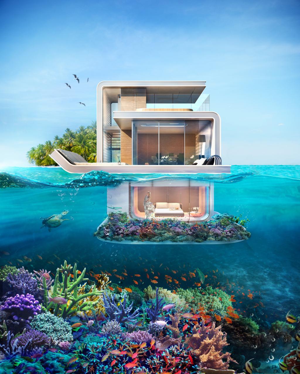 Seahorse : à Dubaï, des villas flottantes pour observer les hippocampes