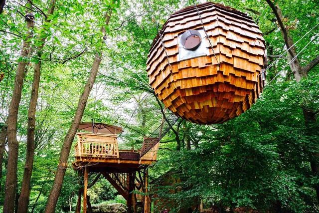 Une nuit en pleine nature au sein d'une cabane dans les arbres