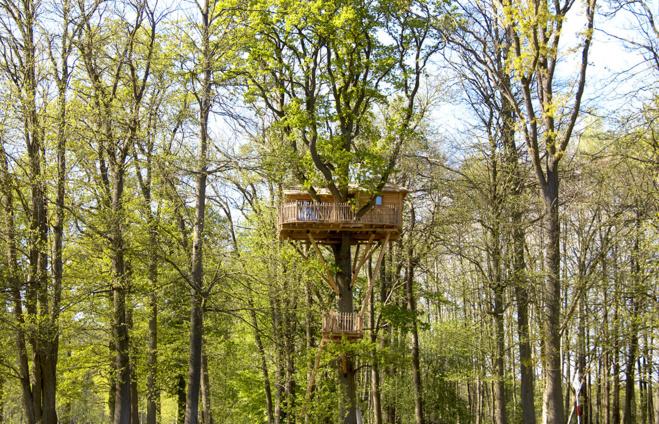 La Cabane Imprenable, perchée à 13 mètres du sol