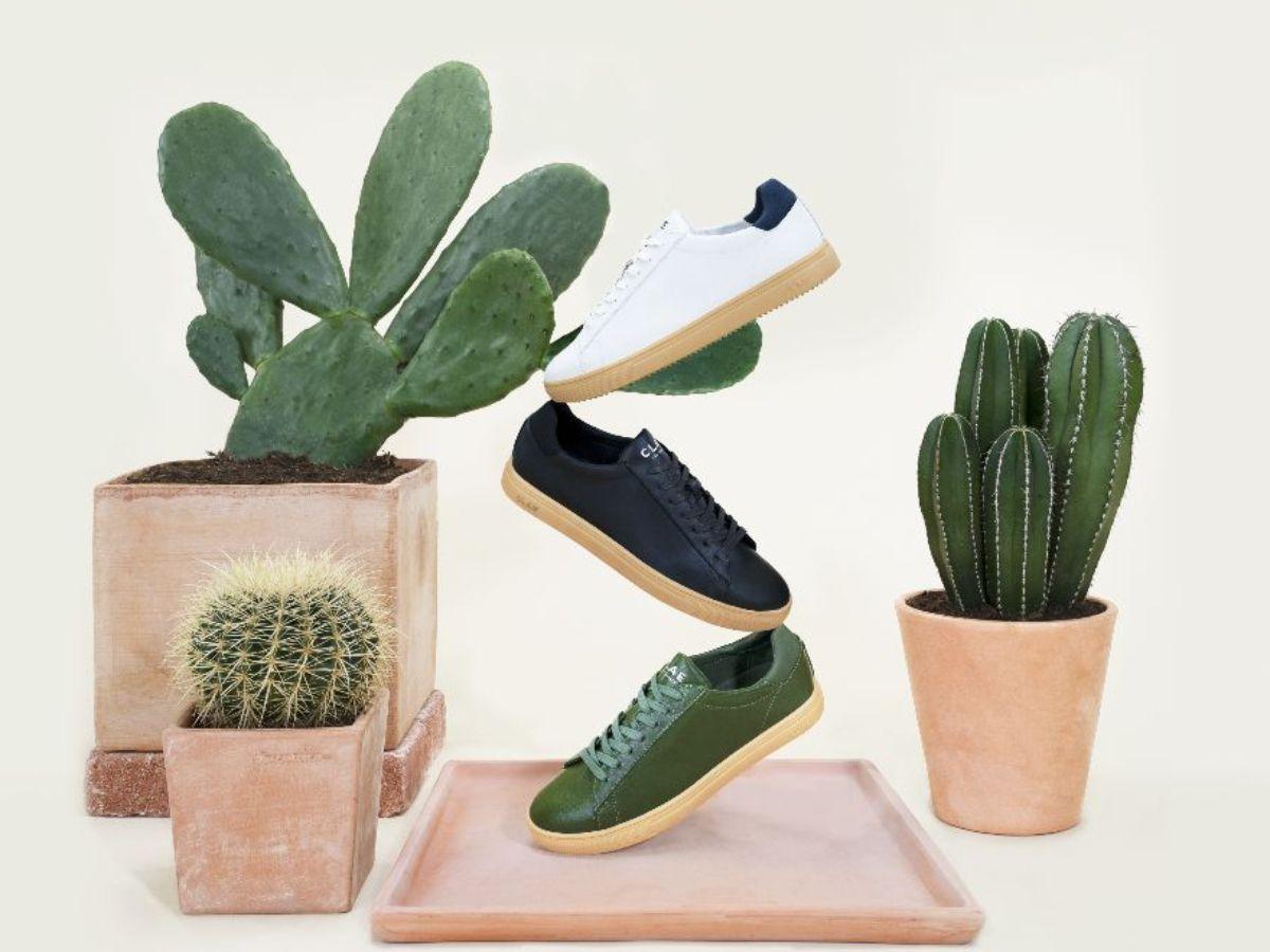 Les premières sneakers modernes en cuir de cactus