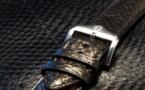 Ictyos, la startup qui métamorphose la peau de poisson en cuir